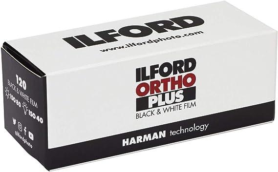 Ilford Delta 100 Profesional Negro Y Blanco 120 rollo de película