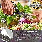 Kitchen Scissors & Ultra Sharp Kitchen Shears