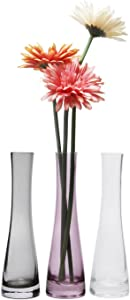 Rachel's Choice 8.5 Inch Small Bud Vase, Glass Flower Vase for Home Decor Centerpieces Gift, Pack of 3