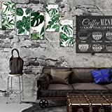 xxiaoTHAWxe 6Pcs Green Plant Monstera Deliciosa Removable Decal Wall Art Sticker Home Decor