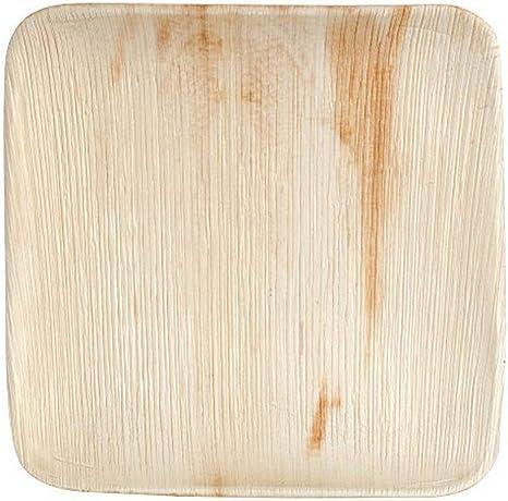 Amazon Com Ecogecko 10 Square Palm Leaf Plate 100 Ct Case Home Kitchen