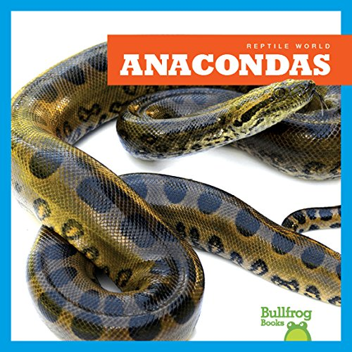 Anacondas (Bullfrog Books: Reptile World)