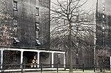 Wood Wall Art Photography - Bourbon Themed