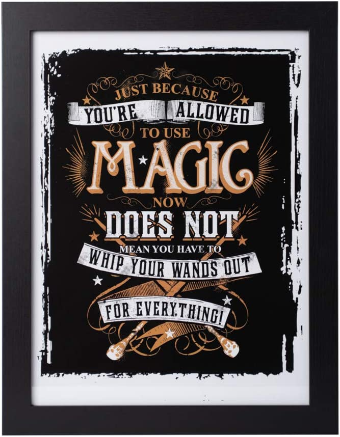 Grupo Erik Cuadro Decorativo Harry Potter Magic, Multicolor, 30 X 40 Cm