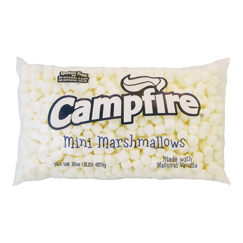 Campfire Mini Natural Vanilla Marshmallow, 1 Pound -- 12 per case. by Clown Global Brands