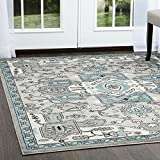 Home Dynamix Boho HD5913-453 Indoor Area Rug | Trendy Bohemian Chic Rug with Rich Fibers & Comfortable Feel | Distressed Finish | For Living Room, Bedroom, Dining Room, Kitchen, 7'9 X 10'2