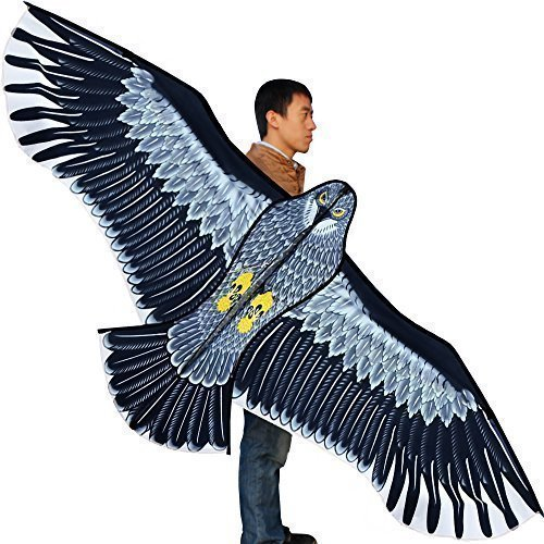 HENGDA KITE-Strong Eagles!Huge Beginner Eagle Kites for Kids and Adults.74-Inch (Best Kites For Adults)