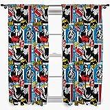 DC Comics Batman V Superman Clash 72-Inch Curtain Set
