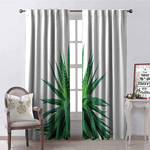 Amazon Com Tapesly Plant Blackout Curtain Medicinal Aloe Vera With Vibrant Colors Indigenous Species Alternative Natural Remedy 2 Panel Sets W42 X L84 Inch Fern Green Home Kitchen