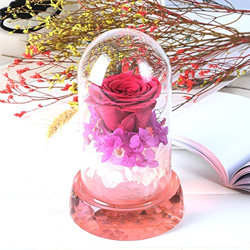 Eternal Flower Glass Finish Gift Box Girl Gift Crystal Base Micro Landscape Decoration Creative Crafts by qianning (Image #1)