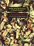 Edible Wild Mushrooms of North America, David W. Fischer and Alan E. Bessette, 0292720793