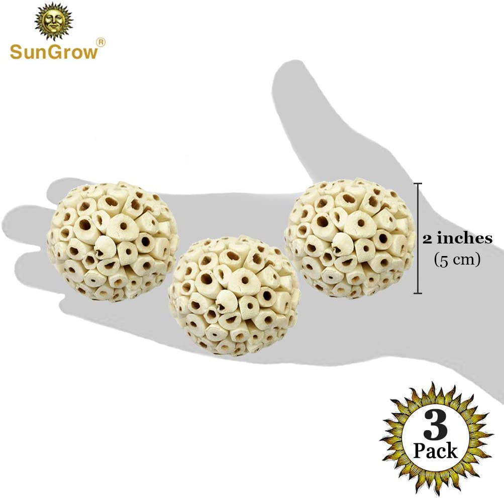 """--- Satisfies Natural Pecking Instincts in Parrots Dental Chew Ball for Chinchillas 3 Sola Atta Foraging Balls Rats 2/"""" Cockatiels /& Parakeets Mice /& Guinea Pigs Unique Addition to DIY Home D"""