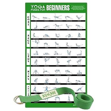 Poses de Yoga para Principiantes Póster con 6