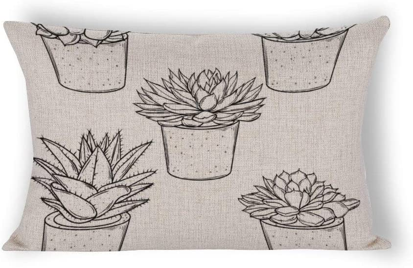Set of Sketches House Plants Succulents in Cotton Linen Rectangle Throw Pillow Covers 16 x 24 Home Decor Lumbar Pillow Covers for Birthday Christmas Thanksgiving Gifts