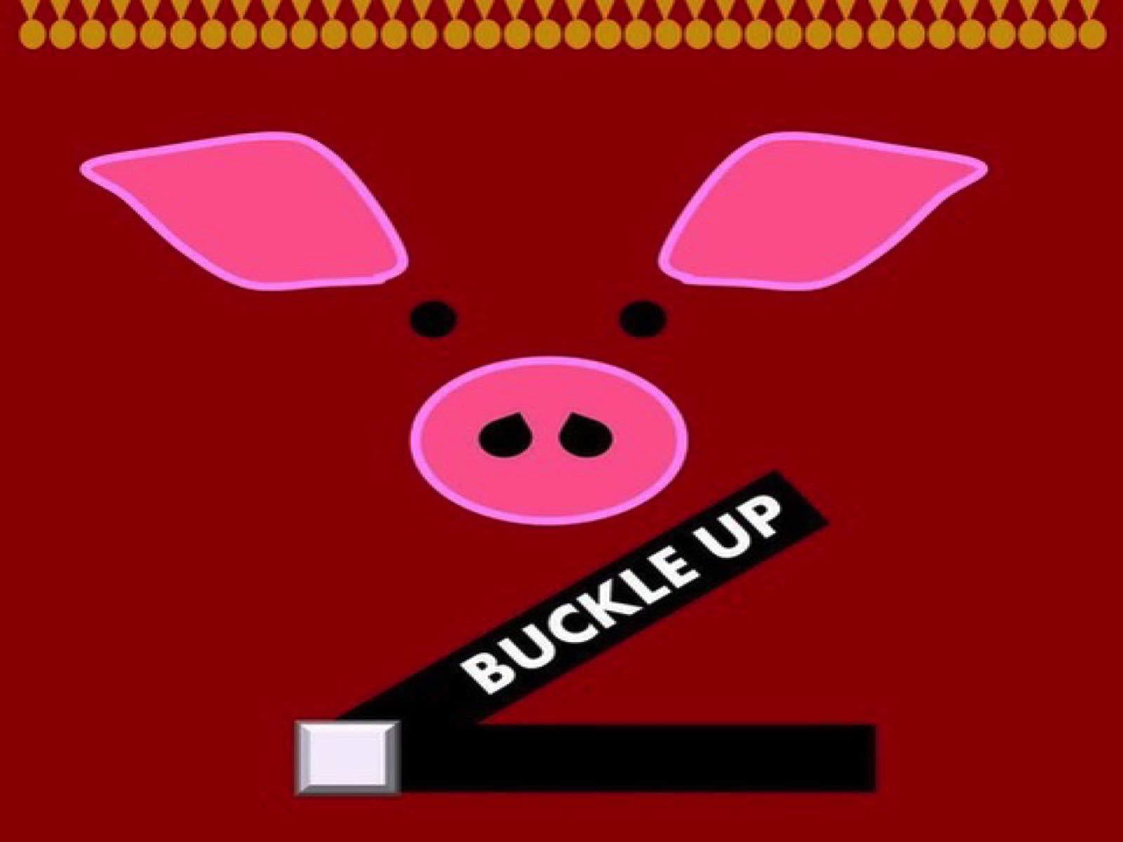 Buckle Up on Amazon Prime Video UK