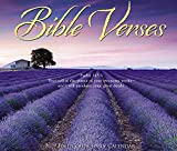 Bible Verses 2019 Box Calendar
