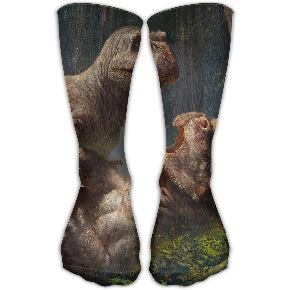 Dinosaur Wrestling Leisure Cotton Socks Men And Women Sports Socks