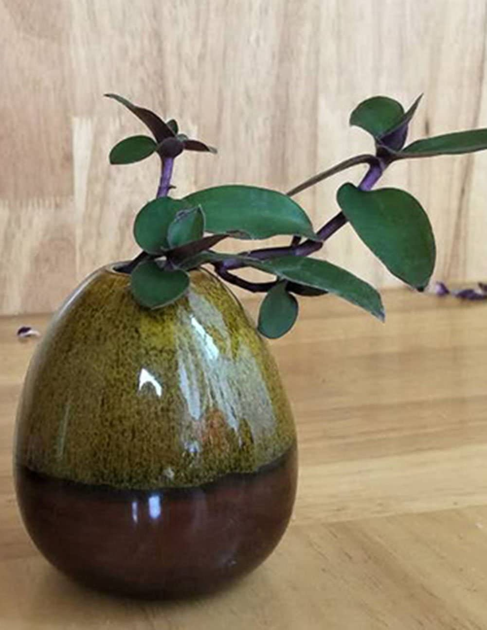 Gespout Vase en C/éramique Forme de Gourde D/écoration Design D/écorations pour la Maison et Bureau Jardin Style 1