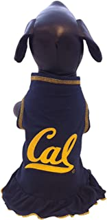 product image for NCAA California Golden Bears Cheerleader Dog Dress