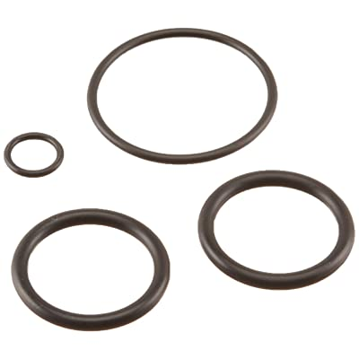 Pentair 273109 Noncorosive Slide O-Ring Replacement Kit : Swimming Pool Pump Parts : Garden & Outdoor