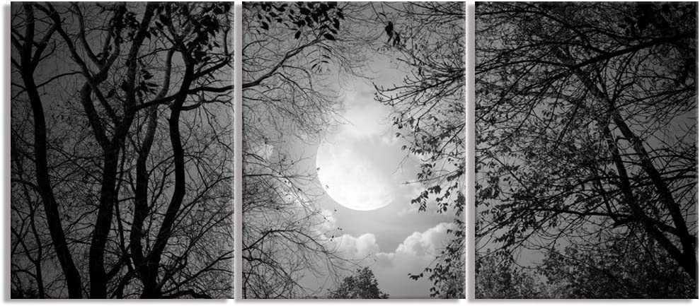 Visual Art Decor Black and White Full Moon Forest Trees Picture Nature Scenery Canvas Prints Wall Art Framed and Stretched Canvas Poster for Living Room Bedroom Bathroom Home Office Decoration