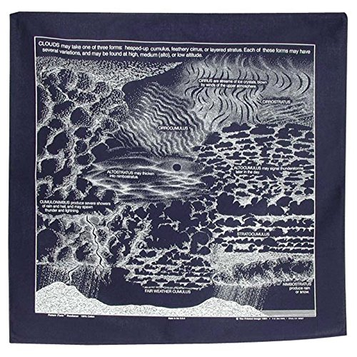 The Printed Image Clouds Bandana 330