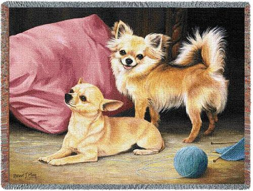 Chihuahua Throw BlanketWoven53 by 70 Inches