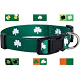St. Patrick's Day Dog Collars