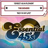 Sweet As A Flower / Boy In My Life (Digital 45)