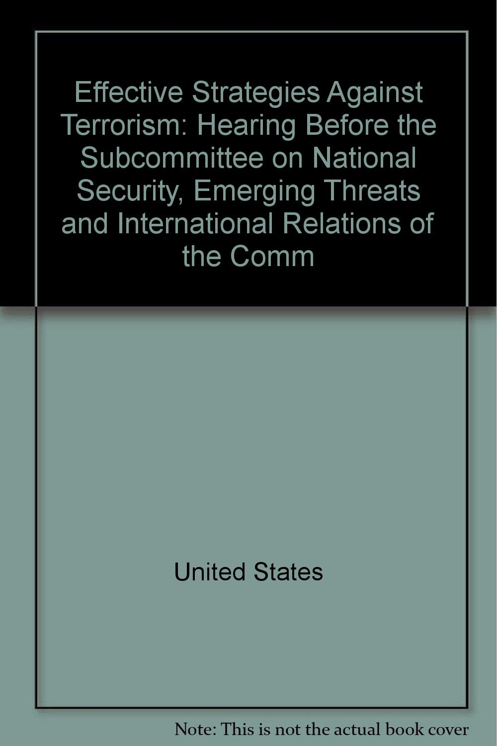 Effective Strategies Against Terrorism: Hearing Before the Subcommittee on National Security, Emerging Threats and International Relations of the Comm ebook