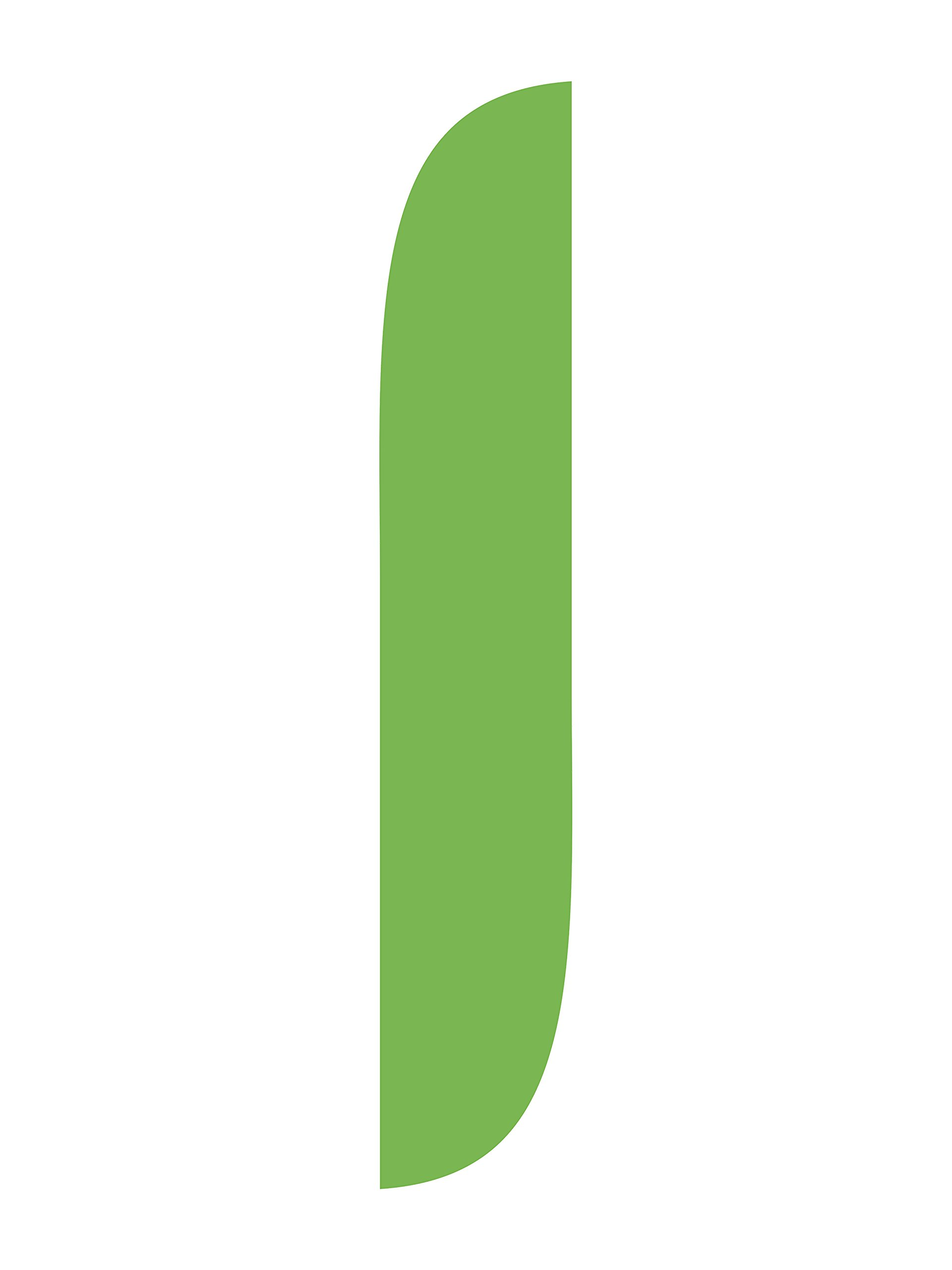 LookOurWay Light Green Feather Flag, 12-Feet