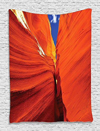 """American Landscapes Collection Grand Canyon in United States of America Picture Kids Girls Boys Orange Red Blue Paprika Supersoft Throw Fleece Blanket 59.05""""X78.74"""""""