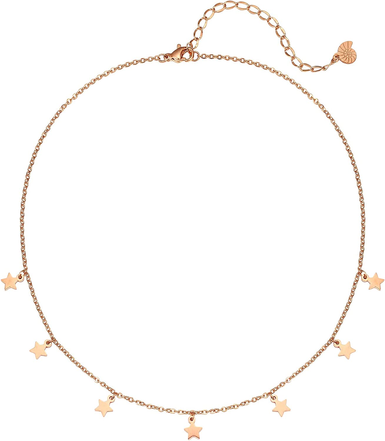 Rose Gold Delicate Choker Necklace