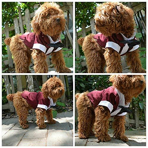 Tangzhan Traje de Disfraz para Perro, Ropa para Perro, Elegante ...
