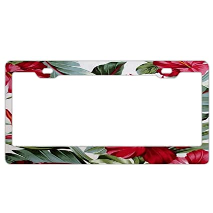 Amazoncom Yex Abstract Tropical Hibiscus Flower License Plate