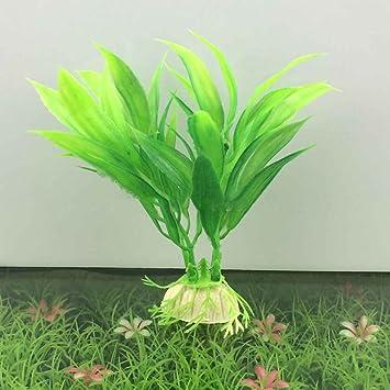 Ornamento planta agua de la hierba verde para las plantas del acuario artificial del acuario plástico Decoración acuáticos Regard: Amazon.es: Hogar