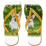 CafePress - Pembroke Welsh Corgi - Flip Flops, Funny Thong Sandals, Beach Sandals