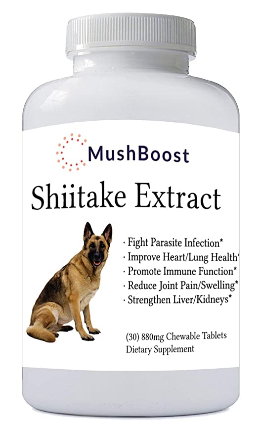 Amazon.com: MushBoost - Extracto de Shiitake para perros, 30 ...