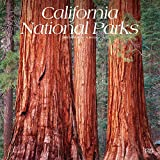 California National Parks 2020 12 x 12 Inch Monthly Square Wall Calendar, USA United States of America Pacific West State Nature