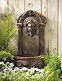 Garden Fountain Lion Statues Waterfall Wall Mounted Sculptures Outdoor Water Pump Ornament Feng Sui Decorative