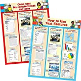 How To Use Text Features Dual Language Poster Set- English and Spanish
