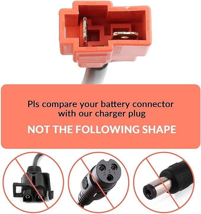 Amazon.com: LotFancy - Cargador de batería de 6 V para ...