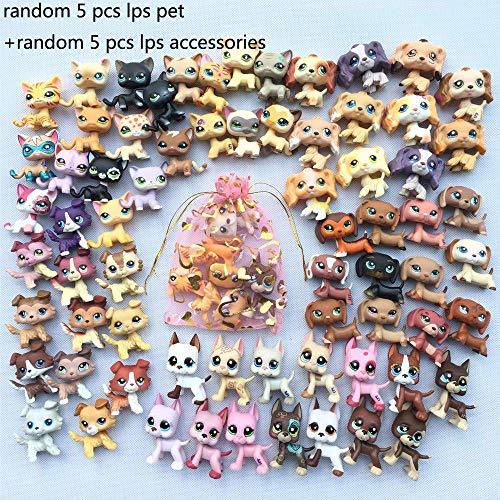Toy Rare Lot 5 Random LPS Cat Dog LPS Great Dane LPS Shorthair Cat LPS Collie LPS Cocker Spaniel LPS Dachshund Puppy with Accessories Lot 5 Random Collar Food Drink Bone Toy Figure Surprise (Lot Cat)