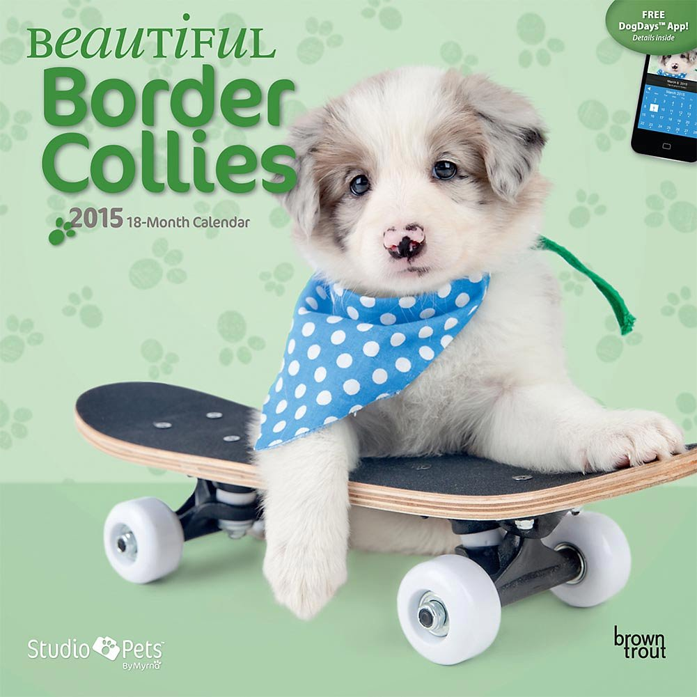 Myrna 2015 hermosa Border Collies 2015 calendario de pared por 2015 Myrna calendarios d3d9cb