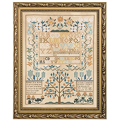 Embroidery Sampler Kit Amazon