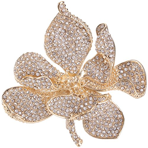 EVER FAITH Women's Austrian Crystal Orchid Flower Petal Brooch Clear -