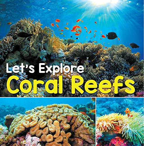 Let's Explore Coral Reefs: Under The Sea for Kids (Children's Fish & Marine Life Books) (Best Freshwater Sharks For Aquariums)