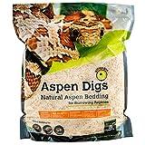 Galapagos 05064 Aspen Digs Shavings Bedding, 8-Quart, Natural