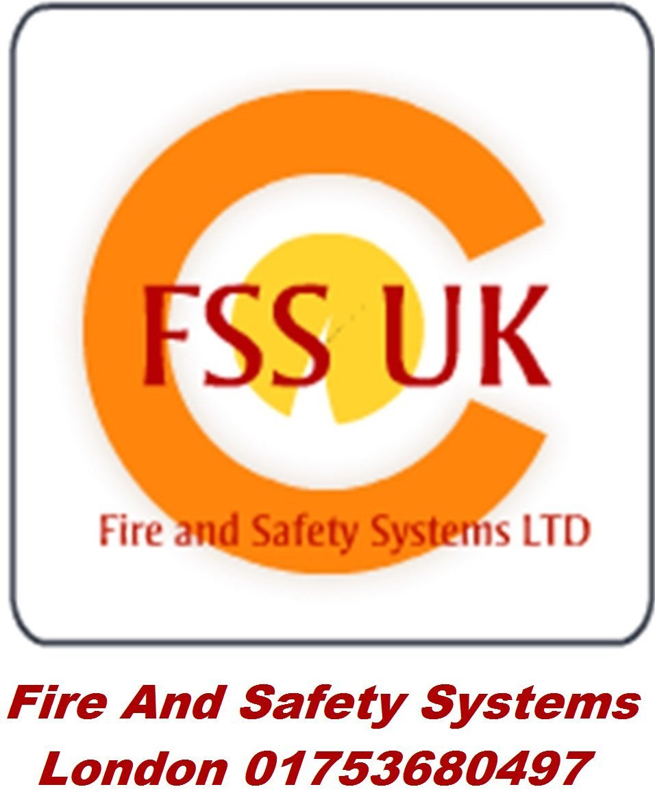 FSS UK estándar británico 600 grams (.6 kg) ABC extintor de polvo seco. BSI – Protector de. Ideal para casas barcos cocina lugar de trabajo oficinas coches furgonetas Taxi Cabs vehículos camiones almacenes garajes hoteles restaurantes