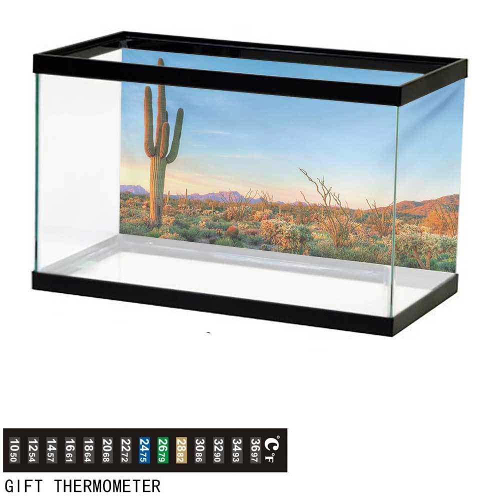 wwwhsl Aquarium Background,Saguaro,Sun Goes Down in Desert Prickly Pear Cactus Southwest Texas National Park,Orange Blue Green Fish Tank Backdrop 72'' L X 24'' H by wwwhsl